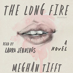 The Long Fire audiobook cover image