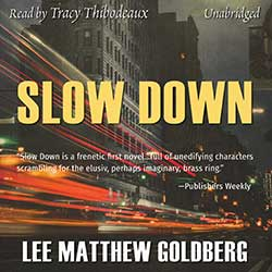 Slow Down audiobook cover image