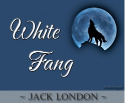 White Fang - Cherrybook