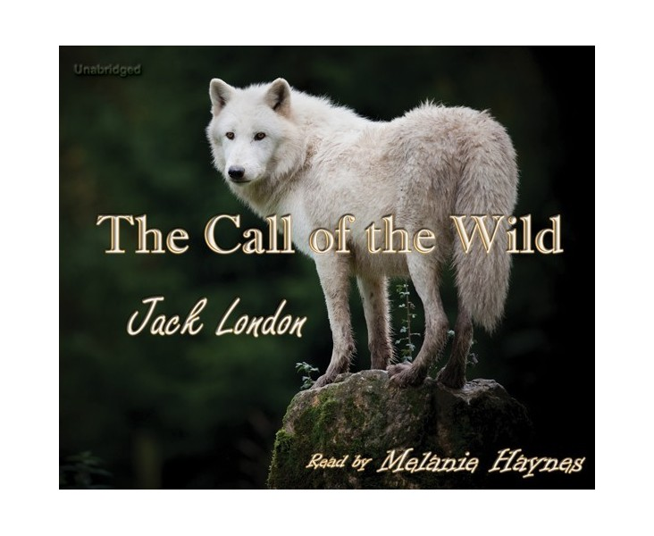 The Call of the Wild - Cherrybook