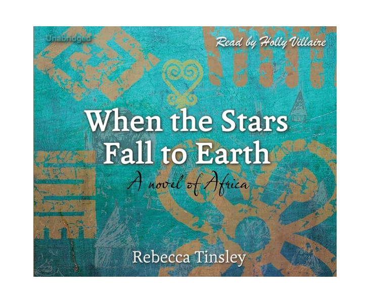 When the Stars Fall to Earth - Cherrybook