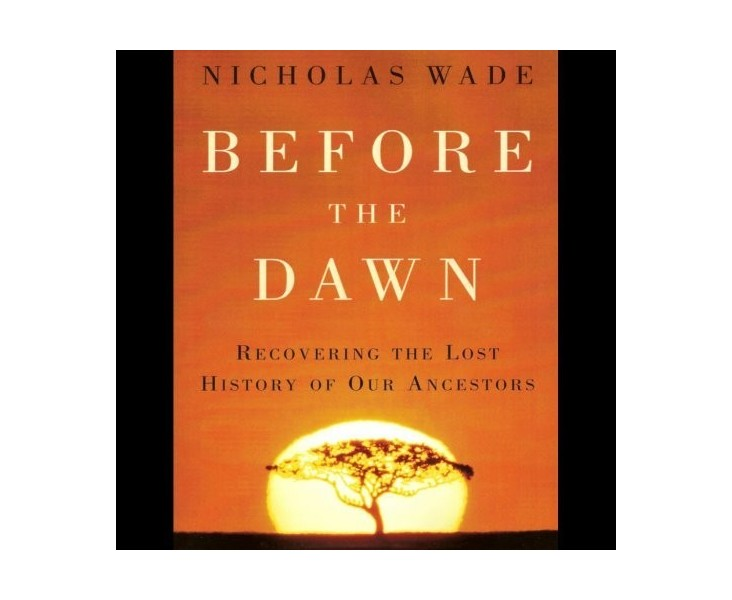 Before the Dawn (used)