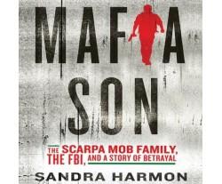 Mafia Son (used)