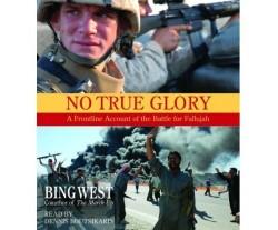 No True Glory (used)