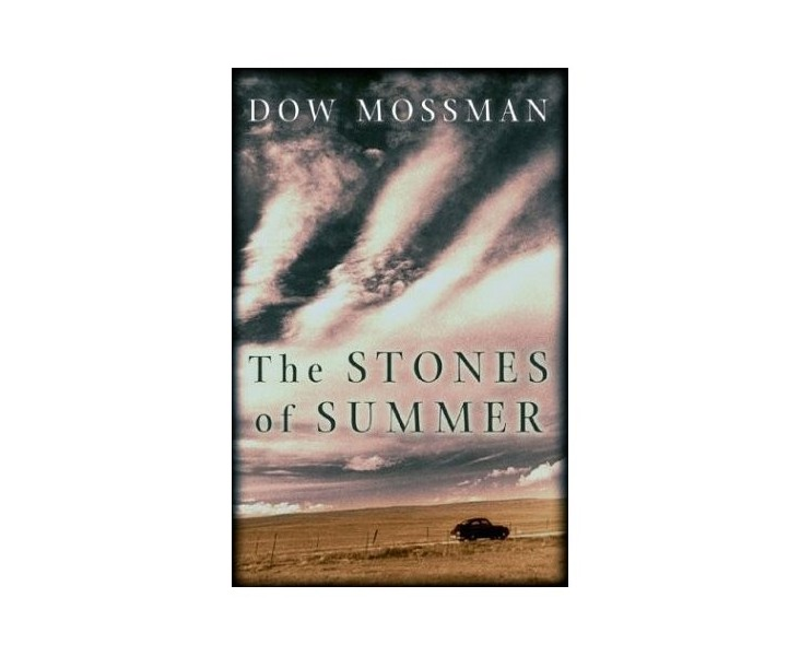 The Stones of Summer (used)