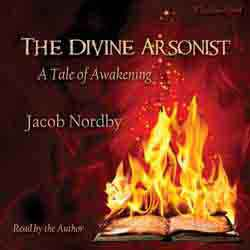 The Divine Arsonist audiobook cover image