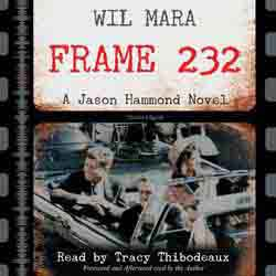 Frame 232 audiobook cover image
